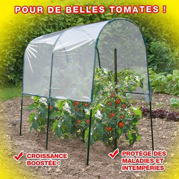 Serre a tomates 3m devient - Arceaux pour serre de jardin ...