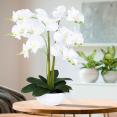 Orchidée artificielle blanche 60 cm double