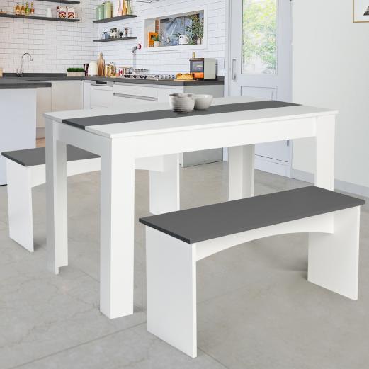 Table à manger + 2 bancs ROZY blanc et gris