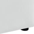 Lit coffre AUSTIN PVC blanc avec sommier 140x190 cm