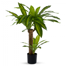 Dracaena artificiel 80 cm avec pot