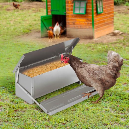 Mangeoire XXL pour poules distributeur automatique à pédale en acier 10 kg