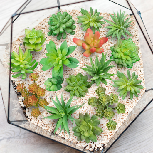 Succulentes artificielles lot de 15 pcs