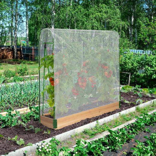 Serre à tomates avec bord en bois