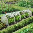 Serre châssis blanche de jardin spéciale forçage 3M