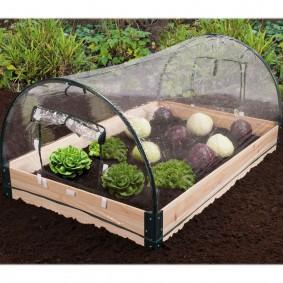 Mini serre de jardin avec châssis bois + housse amovible