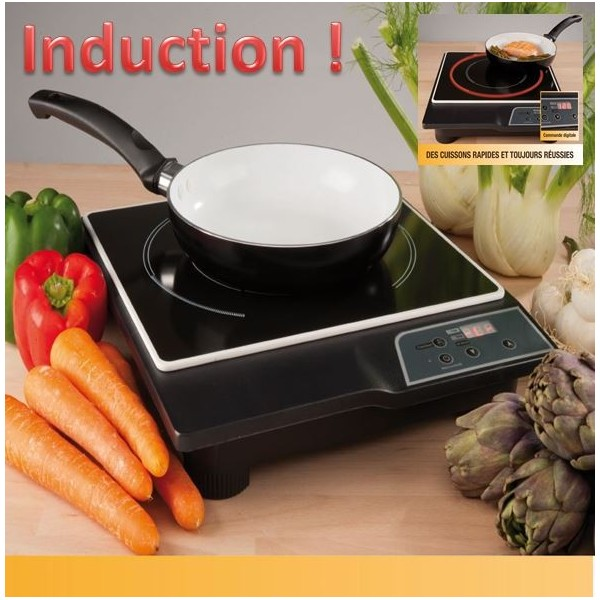 plaque a induction portable hamilton beach portable induction cooktop portable table induction. Black Bedroom Furniture Sets. Home Design Ideas