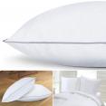 Lot de 2 oreillers confort plume d'oie 60x60 cm anti-acariens