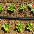 Tuyau micro poreux 25 M goutte à goutte spécial irrigation