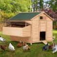 Poulailler chalet 15-18 poules 1 pondoir