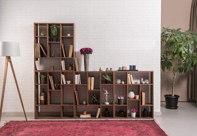Bibliothèques en bois foncé, avec des cases de différentes dimensions devant un tapis rouge