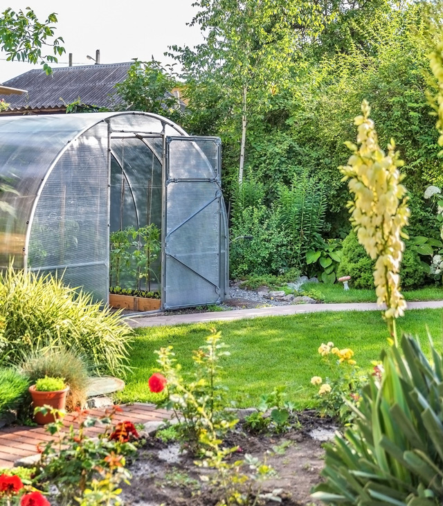 jardin verdoyant avec du gazon, une serre tunnel à structure métallique et bâche transparente au fond